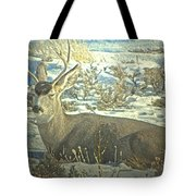 Young Buck Resting Tote Bag