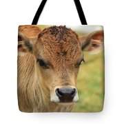 Young Calf In A Pasture Tote Bag