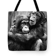 Young Chimpanzees Tote Bag
