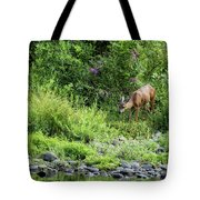 Young Doe Among The Flora, No. 2 Tote Bag