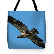 Young Eagle Color Tote Bag