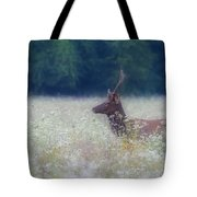 Young Elk In The Smokies. Tote Bag by Itai Minovitz