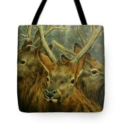 Young Elk Trio- Wapiti Tote Bag