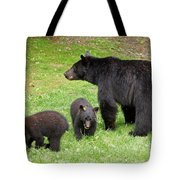 Young Family Tote Bag