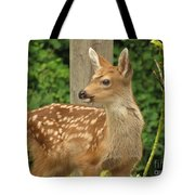 Young Fawn Tote Bag