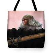Young Female Asian Monkey Sitting On The Roof Tote Bag