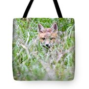 Young Fox Kit Hiding In Tall Grass Tote Bag