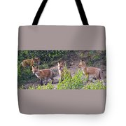 Young Foxes At The Den Tote Bag