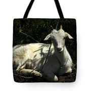 Young Goat Next To A Bush Tote Bag