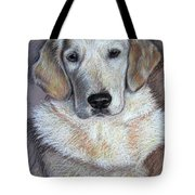 Young Golden Retriever Tote Bag