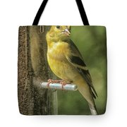 Young Goldfinch Tote Bag