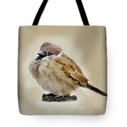 Young House Sparrow Tote Bag