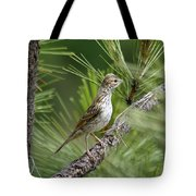 Young Lark Sparrow 1 Tote Bag