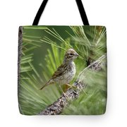 Young Lark Sparrow 2 Tote Bag