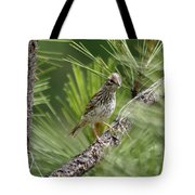 Young Lark Sparrow 3 Tote Bag
