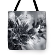 Young Leaves In Black And White Tote Bag