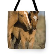 Young Mustangs Playing Tote Bag
