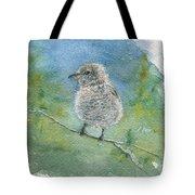 Young Northern Shrike Tote Bag