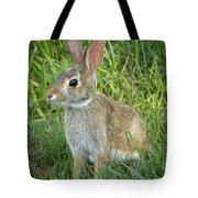 Young Rabbit Tote Bag