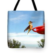 Young Rufous Tote Bag