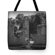 Young Ruins Tote Bag