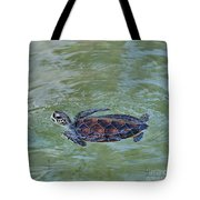 Young Sea Turtle Tote Bag