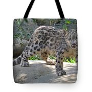 Young Snow Leopard Tote Bag