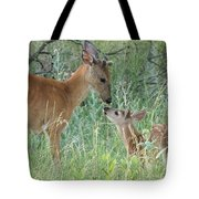 Young White-tailed Deer Say Hello Tote Bag