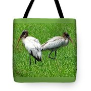 Young Wood Storks 2 Tote Bag