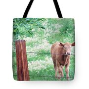 Youngster Tote Bag