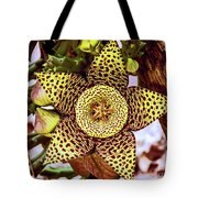 Your A Star In My Eyes Tote Bag