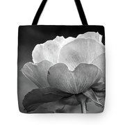 Your Are Beautiful Tote Bag