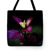 Your Coat Of Many Colors Tote Bag
