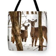 Your Looking At Me Tote Bag
