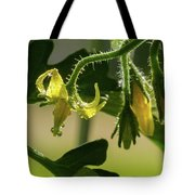 Your Next Tomatoes Tote Bag
