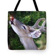 Your Nose So Bright Tote Bag by Robert Frederick