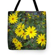 Youre A Daisy If You Do Tote Bag