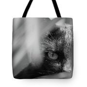 You're Being Watched... Tote Bag