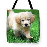 You're Only Young Once Tote Bag