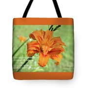 You've Only Got Three Choices Tote Bag