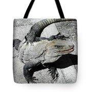 Yucatan Lizard Tote Bag