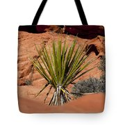 Yucca Beauty Tote Bag