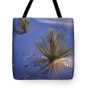 Yucca In Gypsum Sand Tote Bag