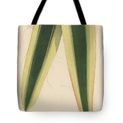 Yucca Leaf Tote Bag