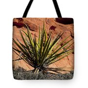Yucca Two Tote Bag
