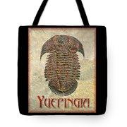 Yuepingia Fossil Trilobite Tote Bag