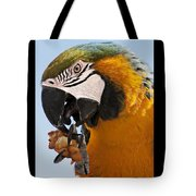 Yum, Funnel Cakes Tote Bag