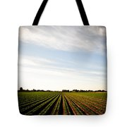 Yuma Fields  Tote Bag