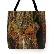 Z Z In A Tree Tote Bag by Randy Sylvia