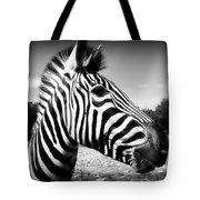 Zebra 2 Tote Bag